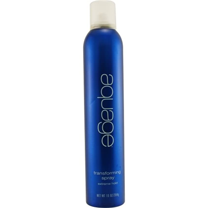 ブラシ例示する弱点by Aquage TRANSFORMING SPRAY 10 OZ by AQUAGE