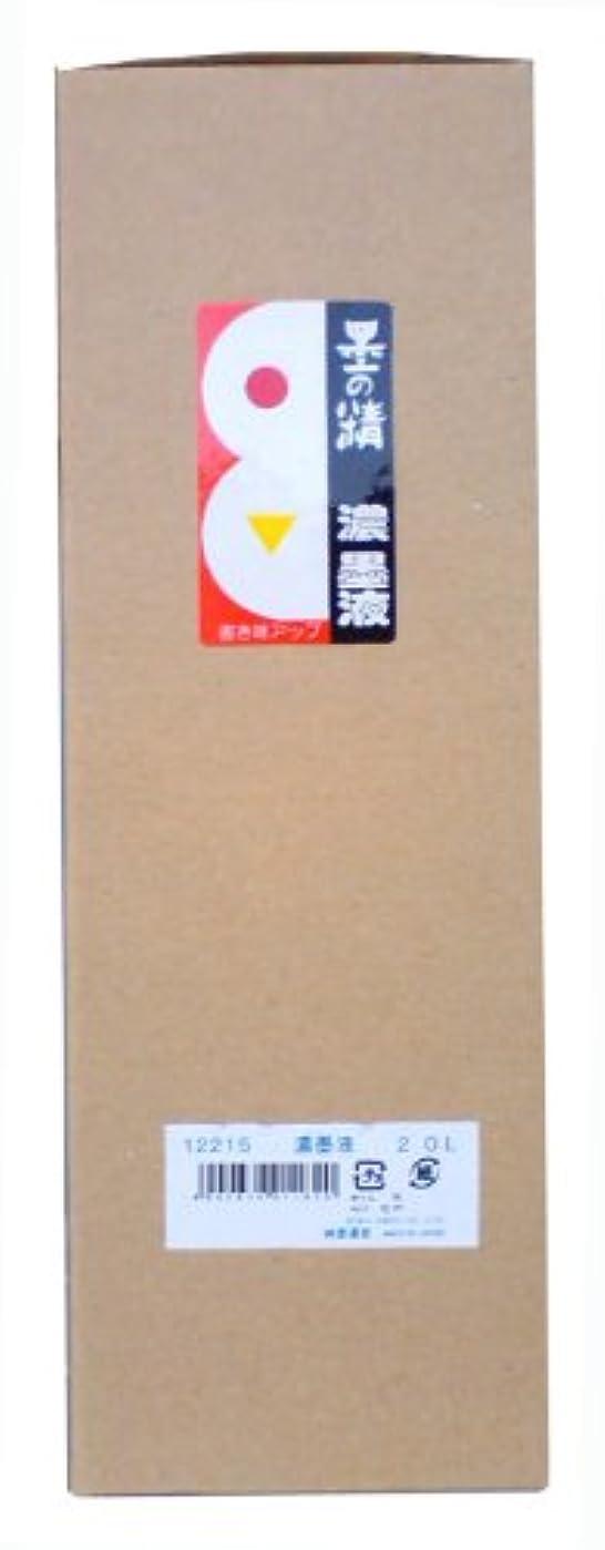 通信網バット重要な墨運堂 墨汁 墨の精 濃墨液 練習用 2L 12215