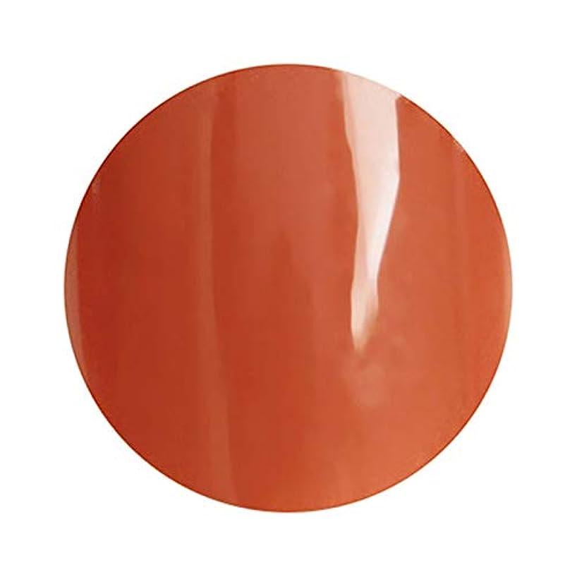 化合物無臭猫背para gel パラジェル カラージェル S033 アウェイクニングオレンジ 4g (久永ひろよプロデュース)