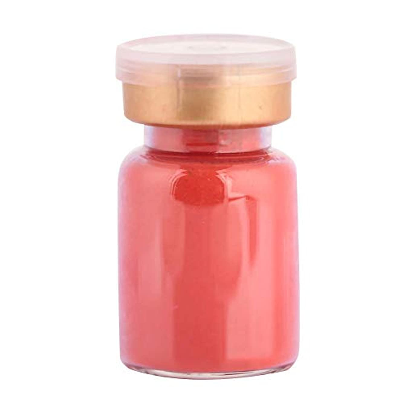パイント内向き葬儀DIY手作り口紅顔料パウダーツール用口紅頬紅アイシャドウメイク(6)