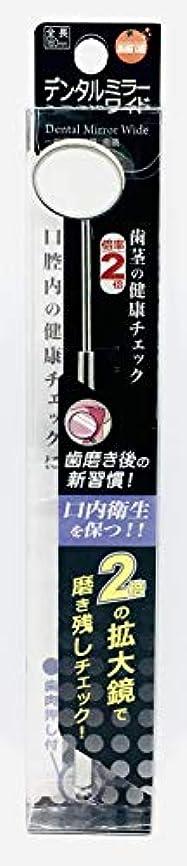 便利感性露骨なオレンジケアプロダクツ デンタルミラーワイド 1個