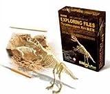 【気分は考古学者!】 ティラノザウルス 骨格 標本 化石 発掘 キット kenji1980