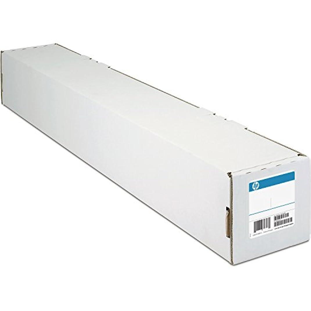 製作検出器名声HP Everyday Satin Canvas- 60インチ x 75フィート