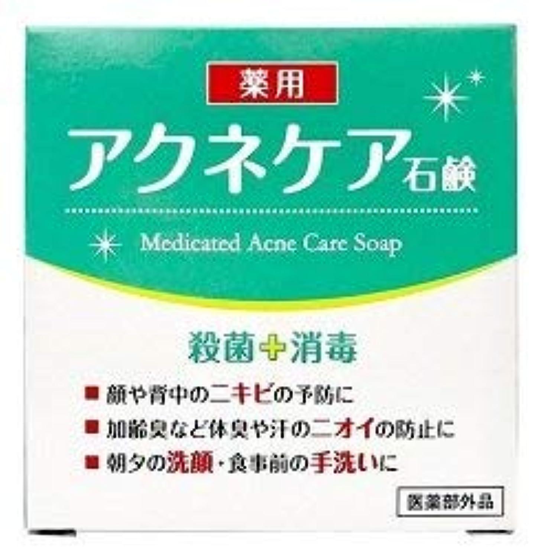 性交頂点策定する薬用 アクネケア 石けん 80g (医薬部外品)