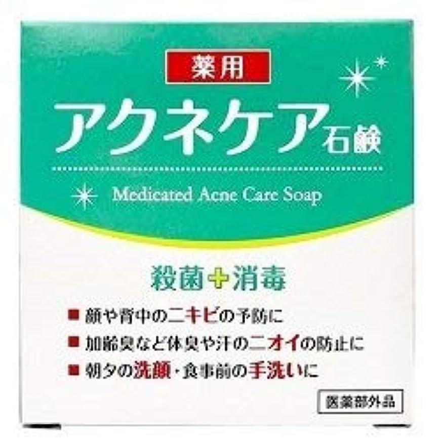 機構民主党スリッパ薬用 アクネケア 石けん 80g (医薬部外品)