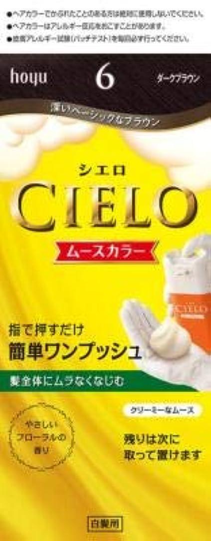 冷ややかなゴミ箱服を着るシエロ ムースカラー 6 ダークブラウン × 3個セット