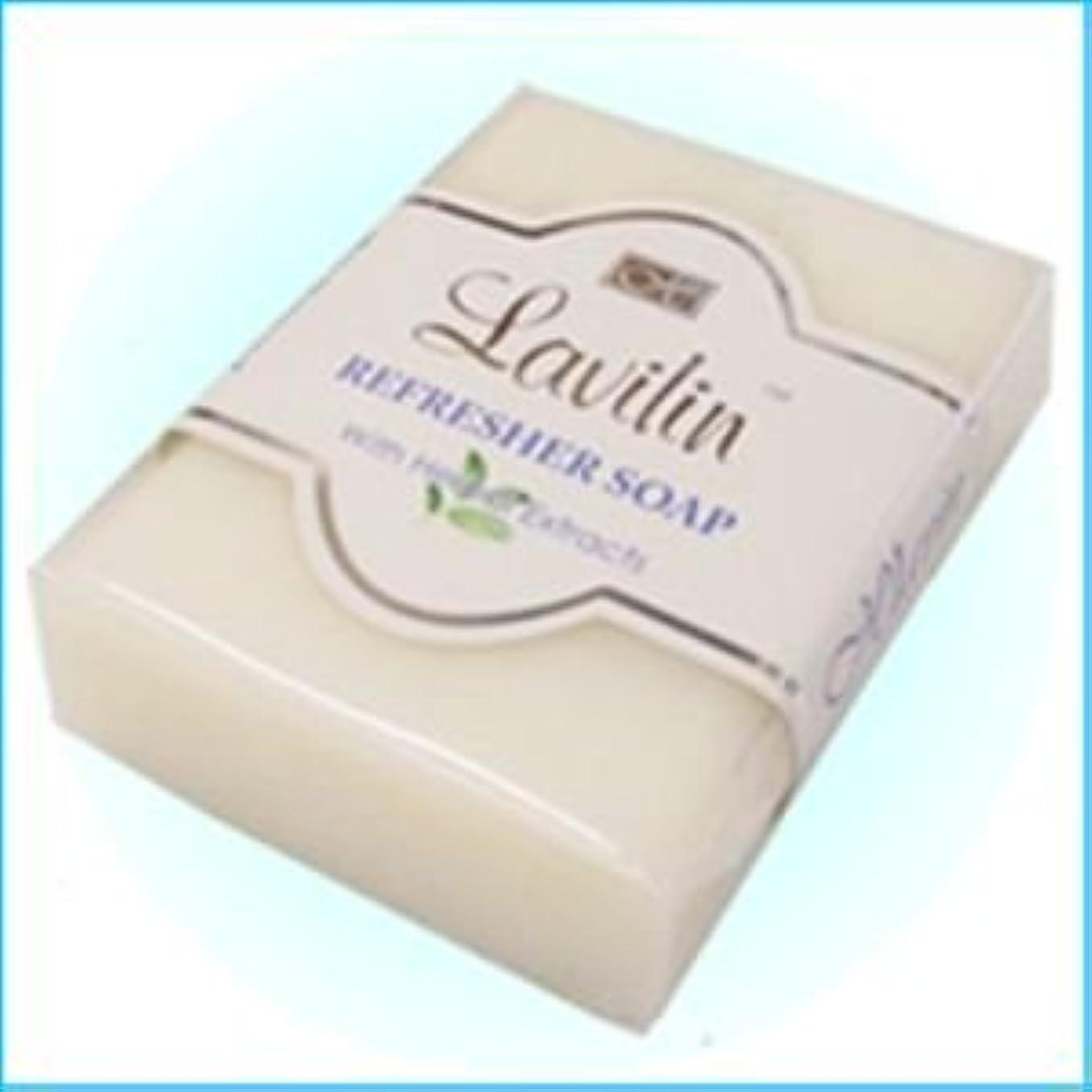 むさぼり食う建てるそれに応じてラヴィリン 消臭せっけん 新リフレッシャーソープ(Lavilin REFRESHER SOAP)
