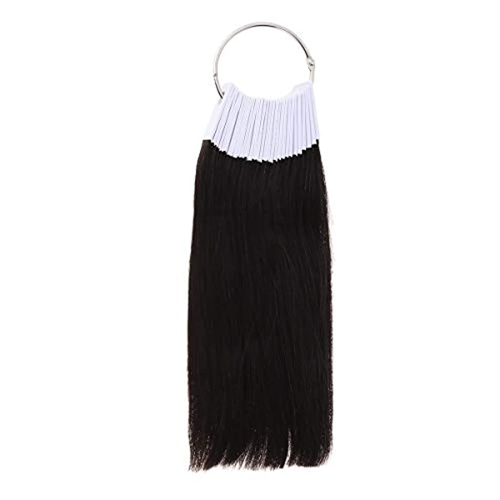 篭付属品抽選LURROSE 30PCSヘアカラーリング人間の髪の色見本サロン用カラーサンプル(9度色)