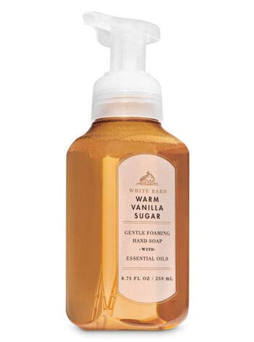 緩む騙す驚バス&ボディワークス ウォームバニラシュガー ジェントル フォーミング ハンドソープ Warm Vanilla Sugar Gentle Foaming Hand Soap [並行輸入品]