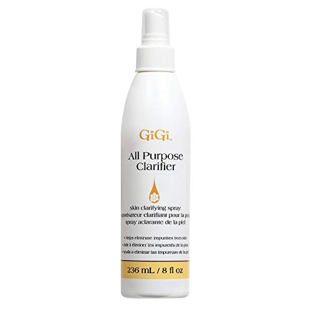 どれ突っ込むエンターテインメントGIGI All Purpose Clarifier 8 oz by GiGi