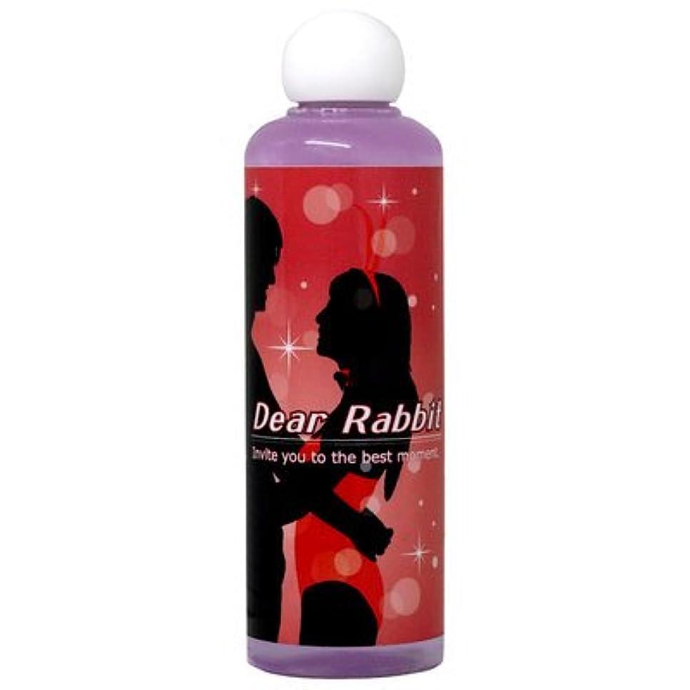 プット着る記念碑的なDear Rabbit ディアラビット