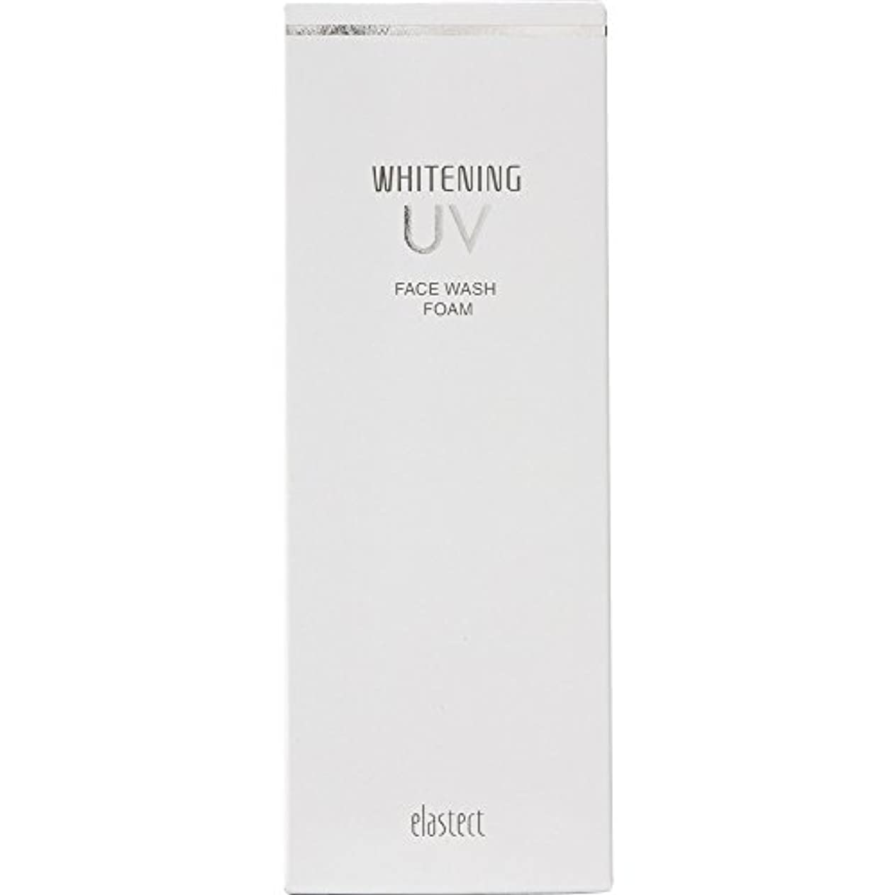 成人期罰する袋エラステクト ホワイトニング フェイスウオッシュフォーム 120g 【医薬部外品】