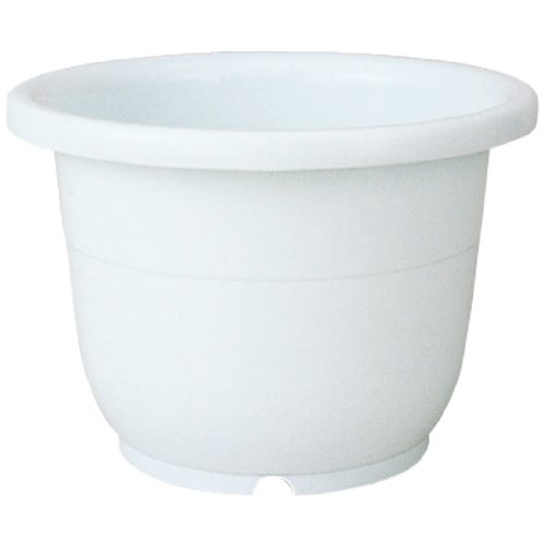 リッチェル 輪鉢 5号 ホワイト