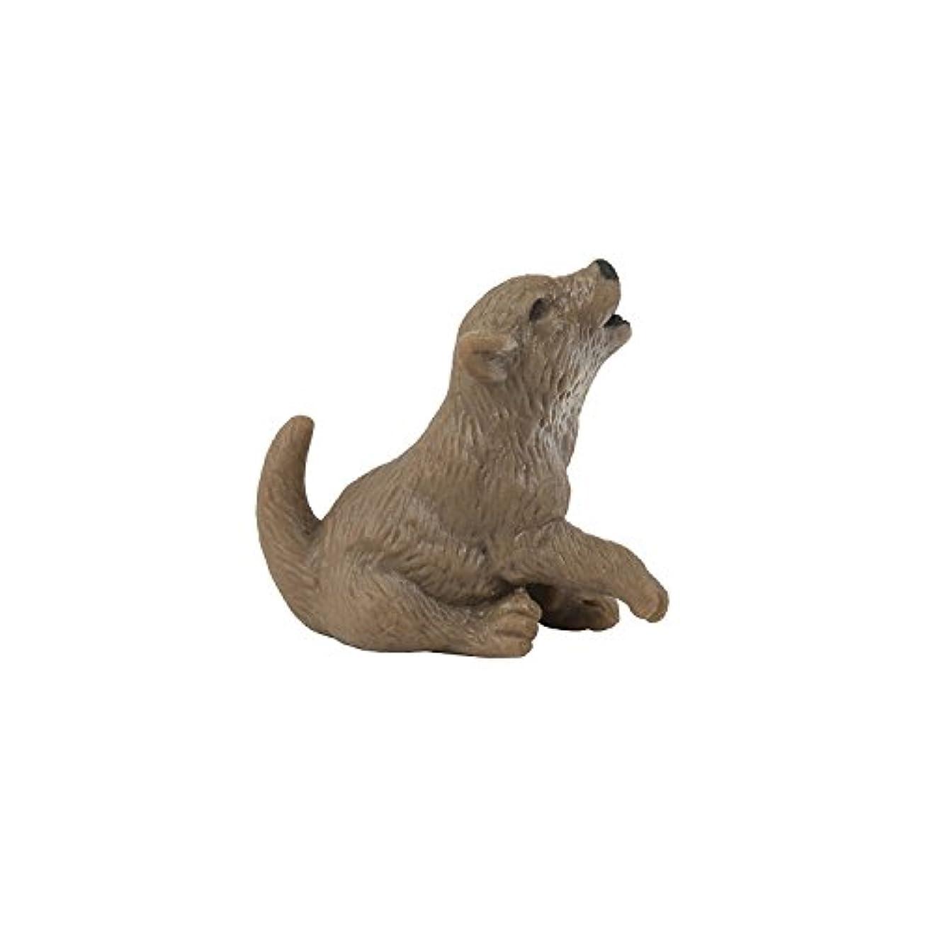 多様体ベーリング海峡母サファリ ミニオオカミ仔 341622
