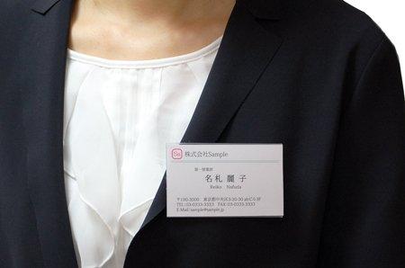 名刺型 名札 20枚セット 安全ピン・クリップ両用タイプ GWM-20 【グリーンウィーク】