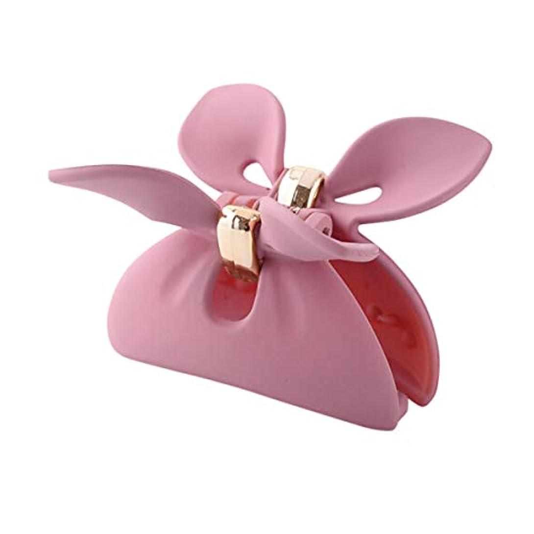 石膏物足りないコンパニオンヘアクリップ、ヘアクリップ、ヘアクリップ、ヘアクリップ、クリップ、ファッション、遊び心のあるメディア、ヘアクリップ、ヘアクリップ、シンプルな女性用ヘアクリップ、黒、ピンク、青、赤 (Color : Pink)