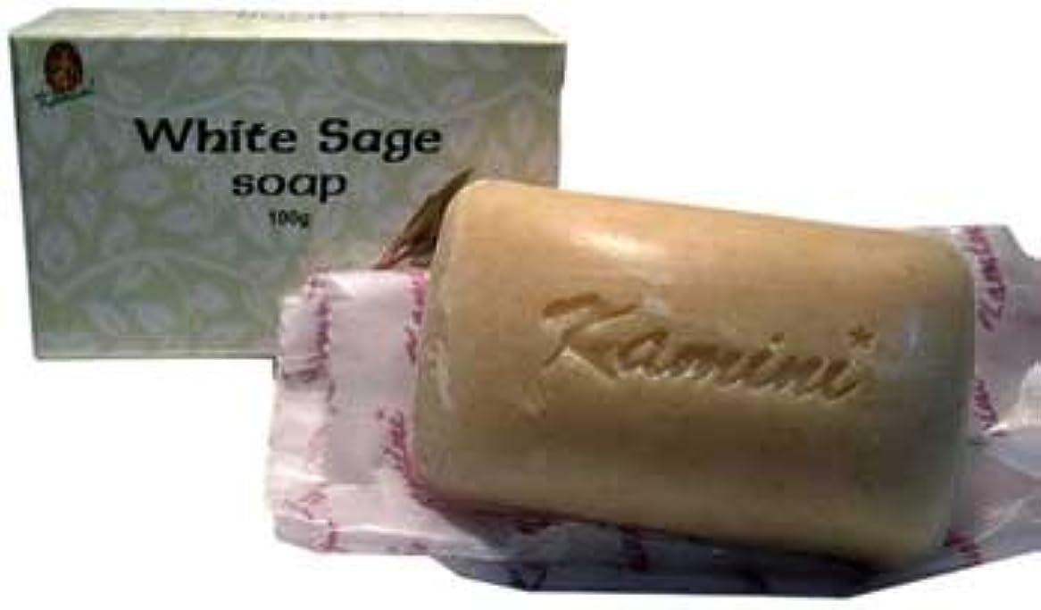 夢暴露する半径RavenブラックウッドImports Fragrance Soapホワイトセージお香クリアエネルギーPurify Yourself 100 % Vegetable Based 100 gバー