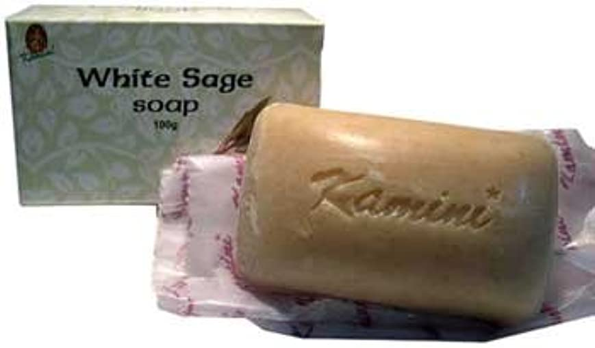 RavenブラックウッドImports Fragrance Soapホワイトセージお香クリアエネルギーPurify Yourself 100 % Vegetable Based 100 gバー