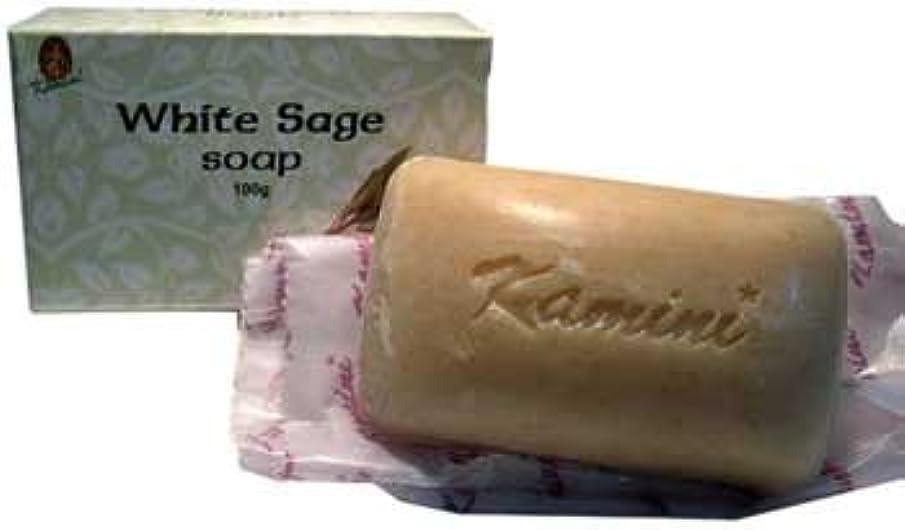 やめる表面的な誇大妄想RavenブラックウッドImports Fragrance Soapホワイトセージお香クリアエネルギーPurify Yourself 100 % Vegetable Based 100 gバー