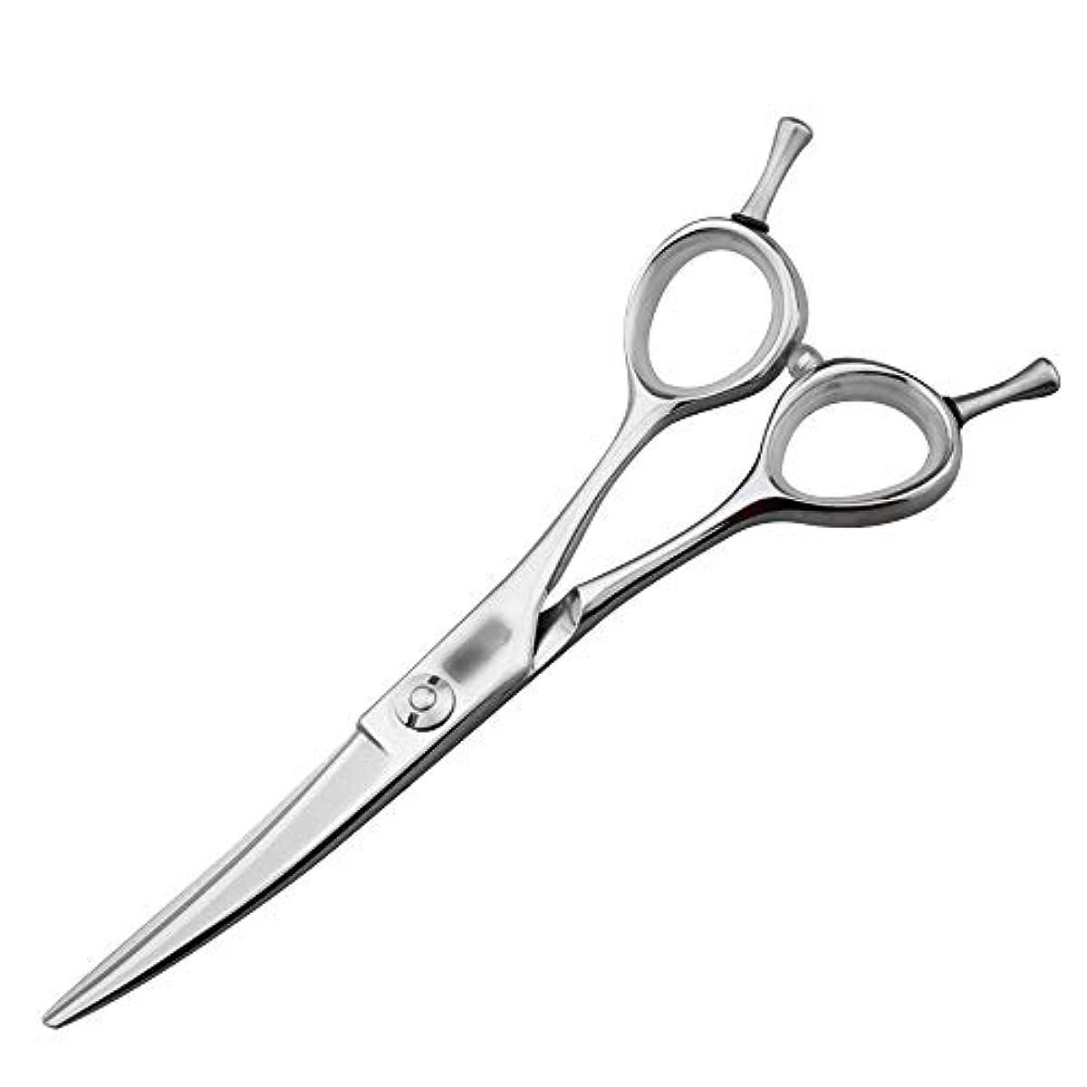 派生するレルムチーター5.5インチの美容院の専門の上限の理髪はさみ、専門の注文の平らなはさみはさみ ヘアケア (色 : Silver)