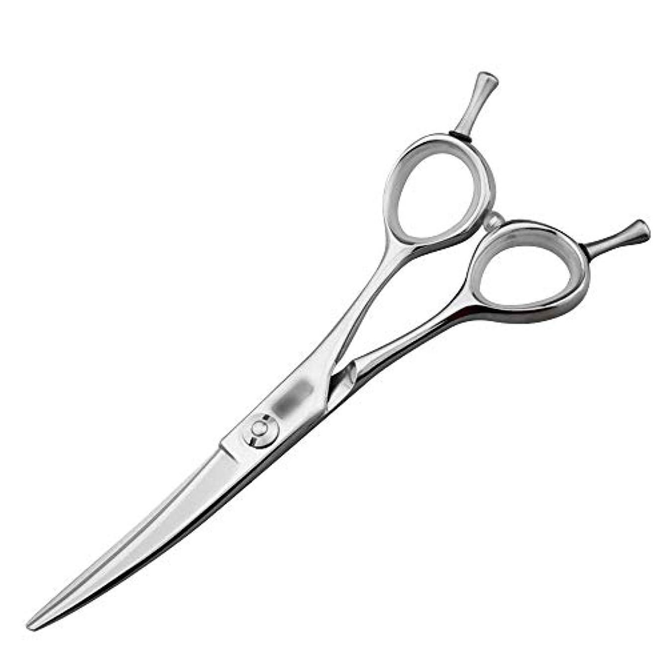 ボーダーの中で粒5.5インチの美容院の専門の上限の理髪はさみ、専門の注文の平らなはさみはさみ ヘアケア (色 : Silver)