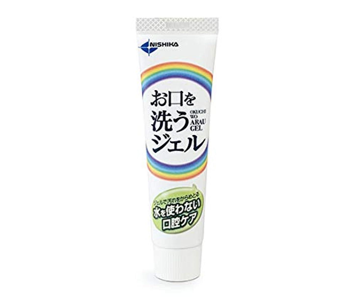 マイナー二週間代替案日本歯科薬品 お口を洗うジェル(口腔ケア用ジェル) 25g