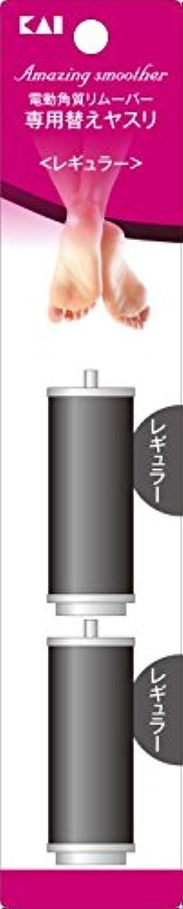 時間技術実現可能電動角質リムーバー Amazingsmoother リフィル レギュラー 2個入