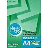 (まとめ) 富士フィルム FUJI 画彩 普通紙仕上げ A4 HKA4250 1冊(250枚) 【×10セット】 ds-1587213