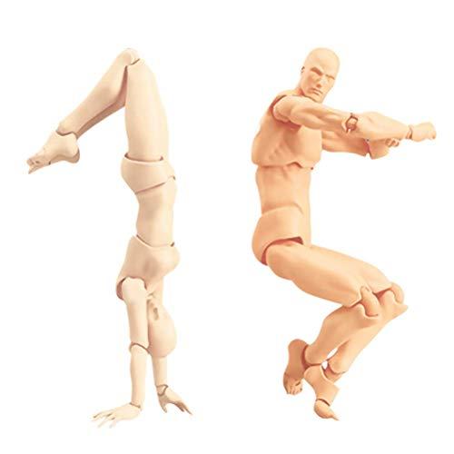 Creacom モデル人形 マネキン デッサンドール PVC 可動式 リアル 人形 全身ドール筋肉...