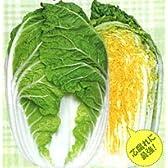 強黄[白菜]【タネ】小袋