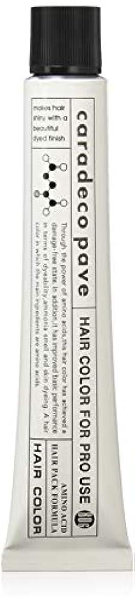 気をつけてファシズム電圧中野製薬 パブェ アッシュBr 9p 80