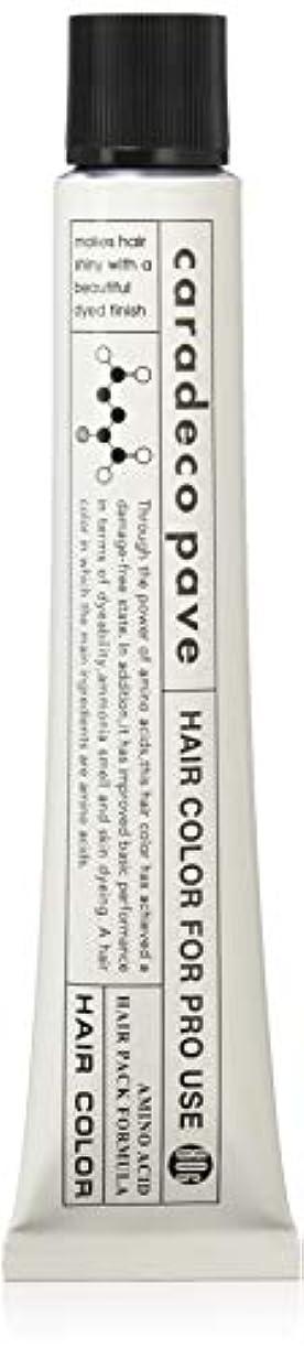 スパイしっかり影のある中野製薬 パブェ アッシュBr 9p 80