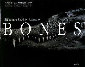 BONES ― 動物の骨格と機能美の詳細を見る