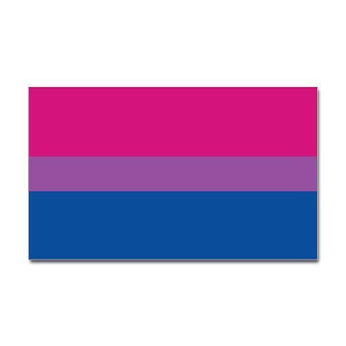 CafePress Bisexual Pride Flag Rectangle Sticker Sticker Rectangle - 3x5 White by CafePress [並行輸入品]