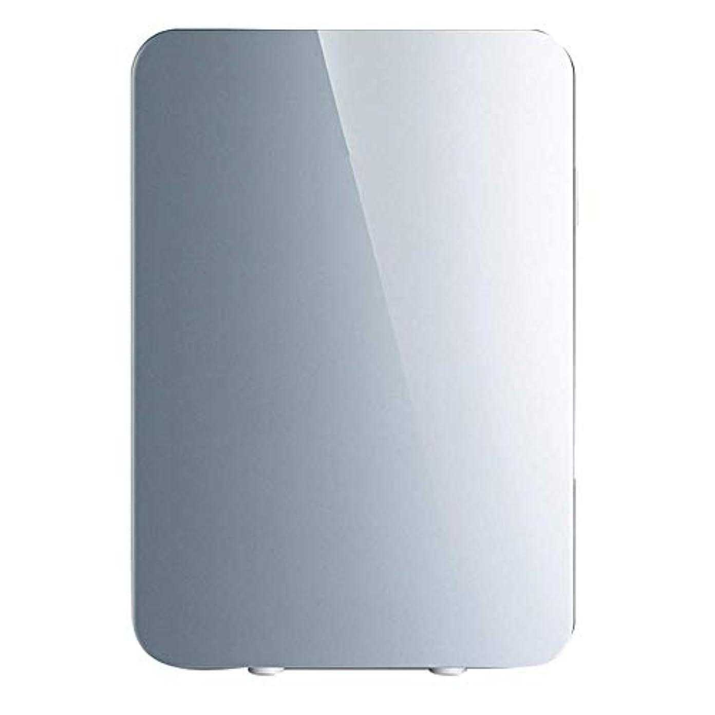 ピーク超高層ビル割る家庭用デュアルコア小型冷蔵庫20L車の冷暖房ボックスインスリン冷蔵ボックス寮のオフィス食品保存ボックス車12V家庭用220V