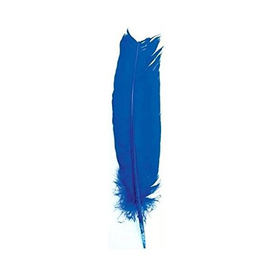検出一族幸福動物フェザーで明るいブルーIncense Smudge Stick Writingツール