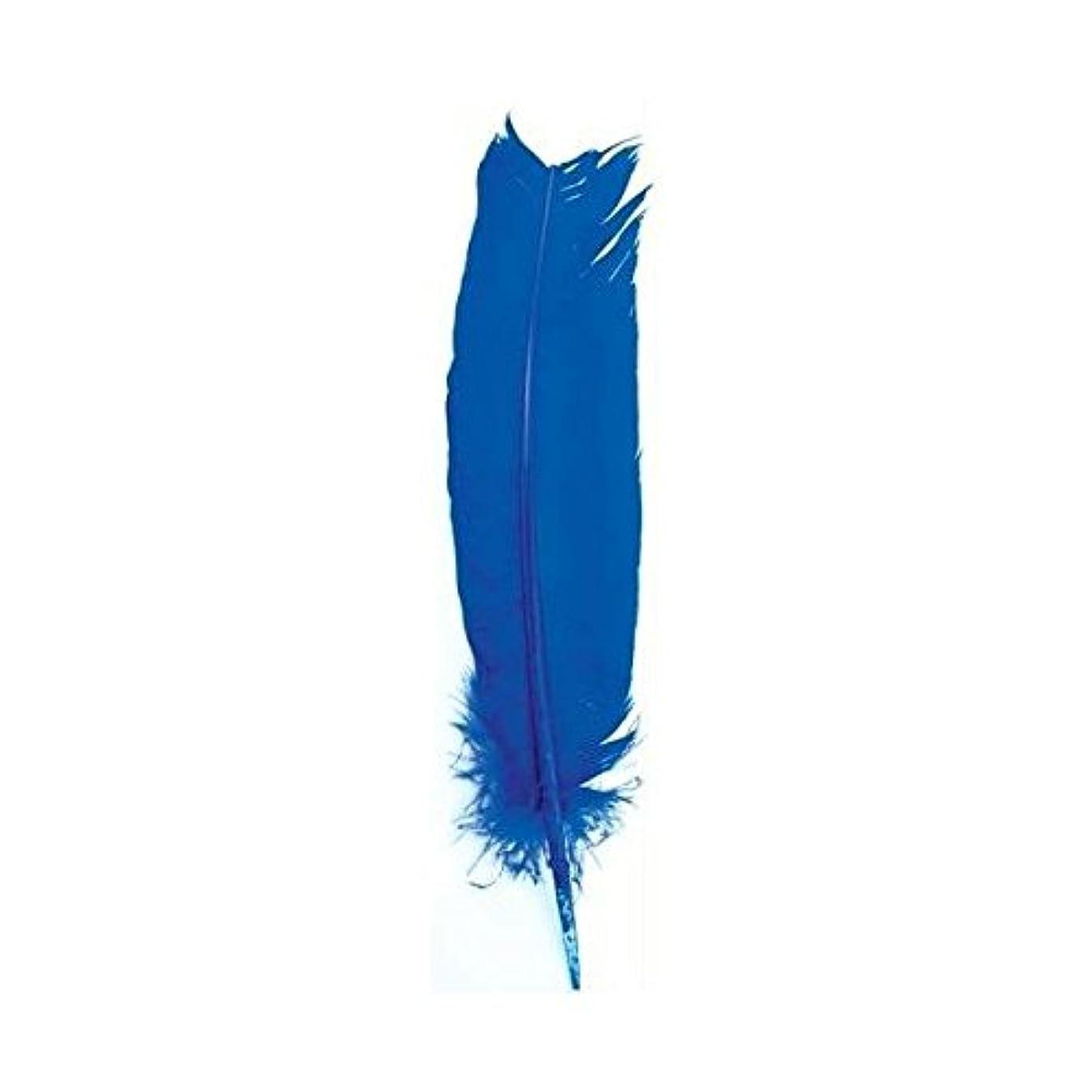 内側メタリック恐ろしい動物フェザーで明るいブルーIncense Smudge Stick Writingツール