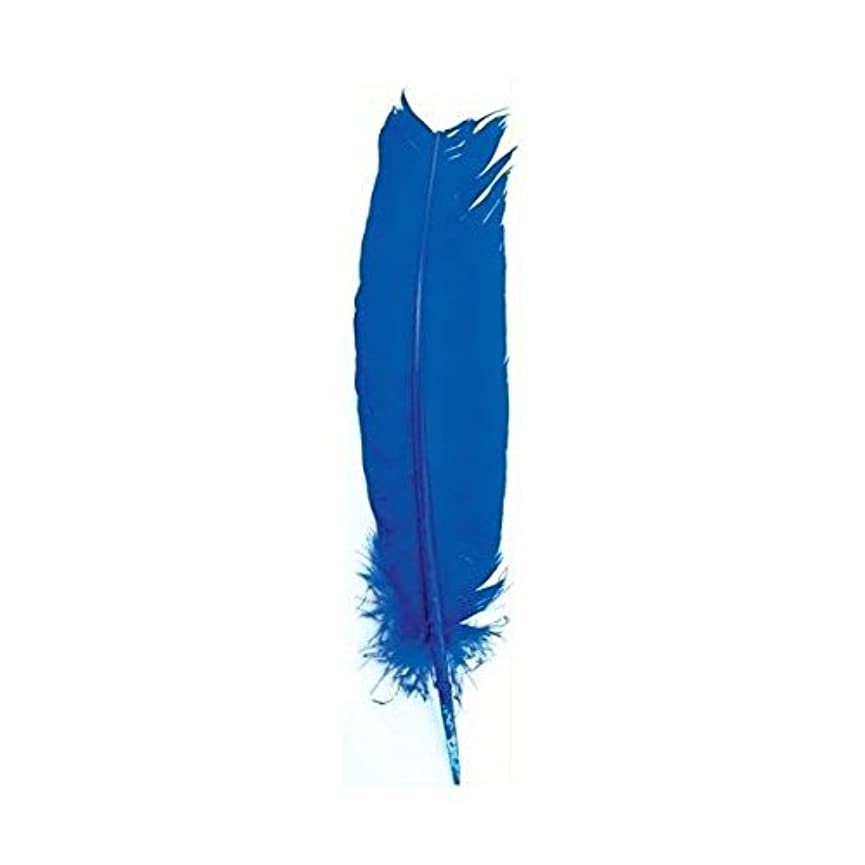 期待バイソンロビー動物フェザーで明るいブルーIncense Smudge Stick Writingツール
