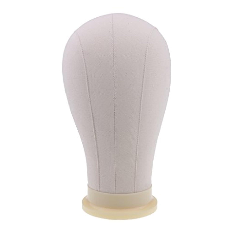 予想する拡大するパーティションToygogo マネキンヘッド ディスプレイ 頭部モデル かつら 帽子 メガネ 展示 ホルダー 4サイズ - 23インチ