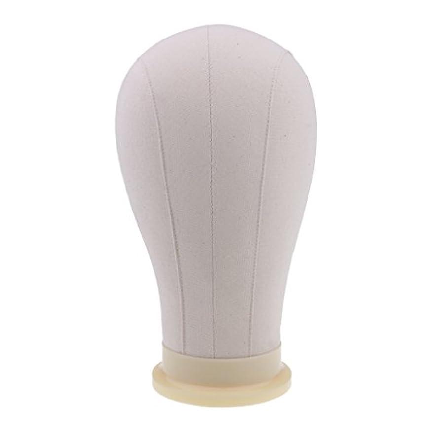 頑丈縮れたペインギリックToygogo マネキンヘッド ディスプレイ 頭部モデル かつら 帽子 メガネ 展示 ホルダー 4サイズ - 23インチ