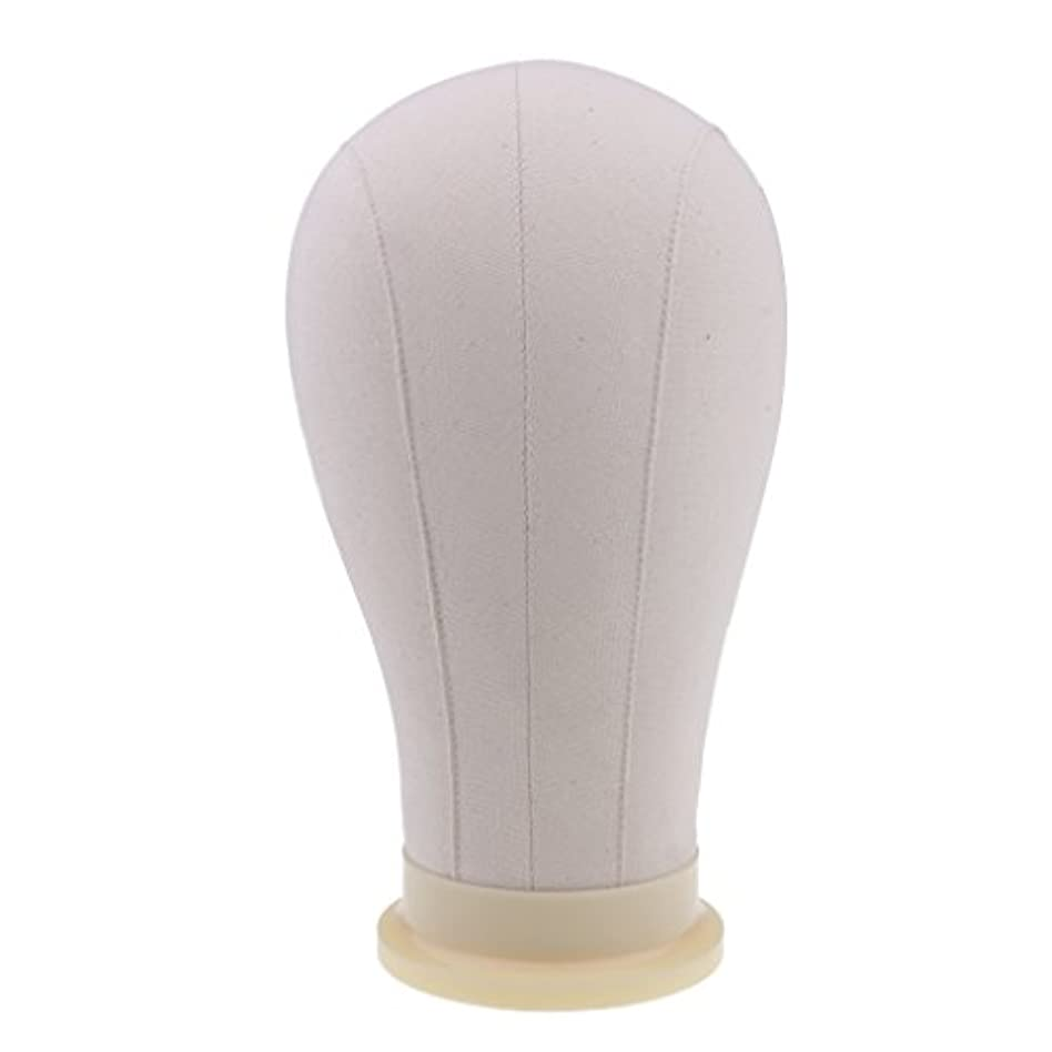 おびえたコーンウォール落ち着いてToygogo マネキンヘッド ディスプレイ 頭部モデル かつら 帽子 メガネ 展示 ホルダー 4サイズ - 23インチ