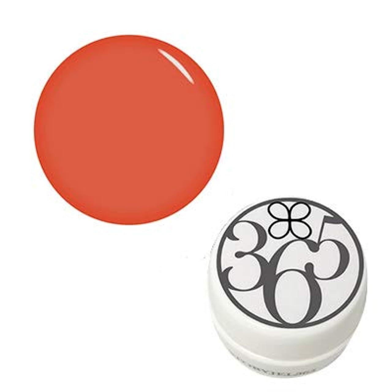 部屋を掃除する鎮痛剤不毛STORY JEL365 カラージェル SJS-190M 大地のオレンジ