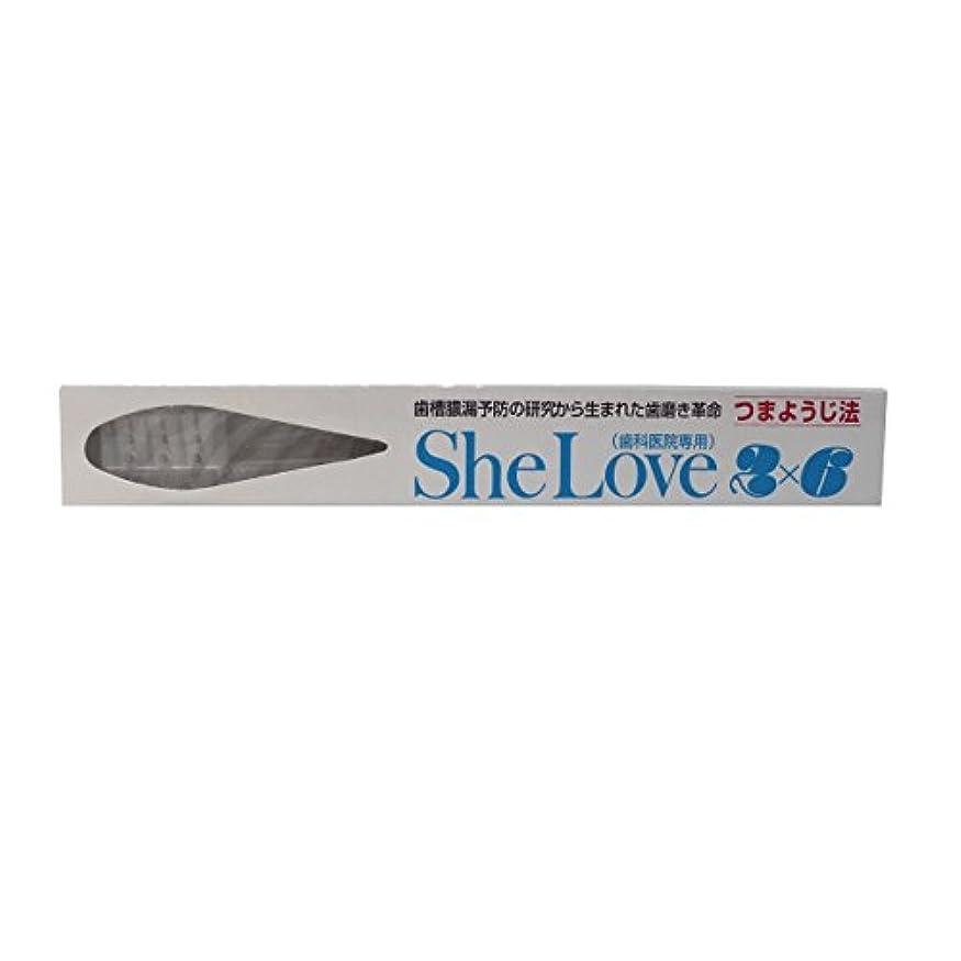 熱望するメロン市の花シーラブ2×6(歯ブラシ) 歯科医院専用 (1本)