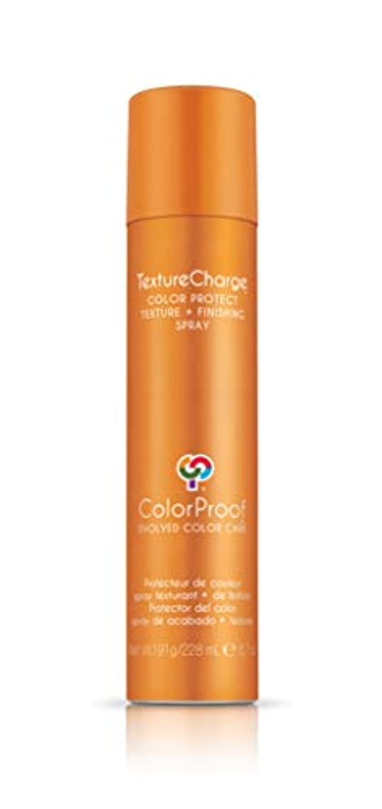 旅行代理店約設定困惑するColorProof Evolved Color Care ColorProof色ケア当局テクスチャチャージ色&保護仕上げスプレー、6.7オズ オレンジ