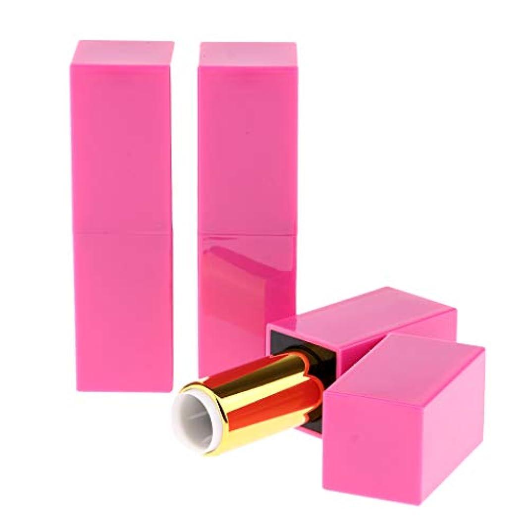 精巧な月曜日カジュアル空の口紅チューブ 全3本 口紅チューブ 化粧チューブ 空詰め替えリップチューブ