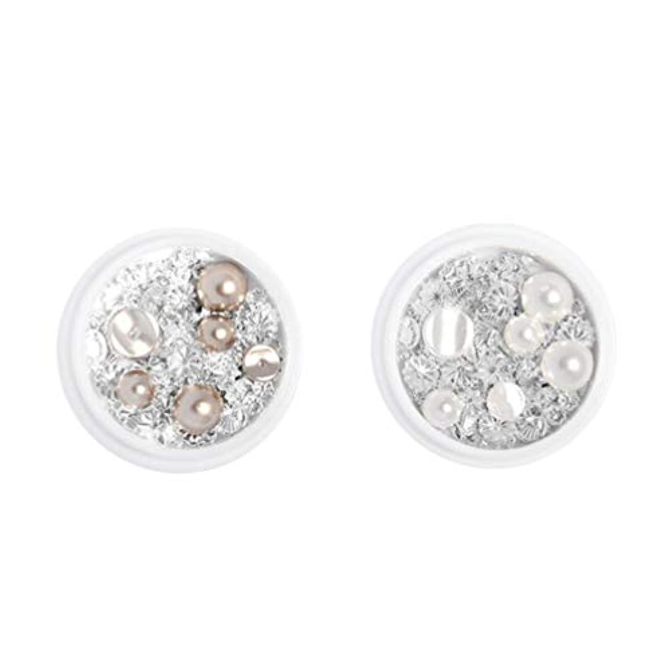 ローズ近代化する反論Minkissy 3Dネイルアートラインストーンガラスダイヤモンドパールネイルクリスタルネイルジュエリーデコレーションマニキュアキット用ホームdiyネイルサロン(シルバー)