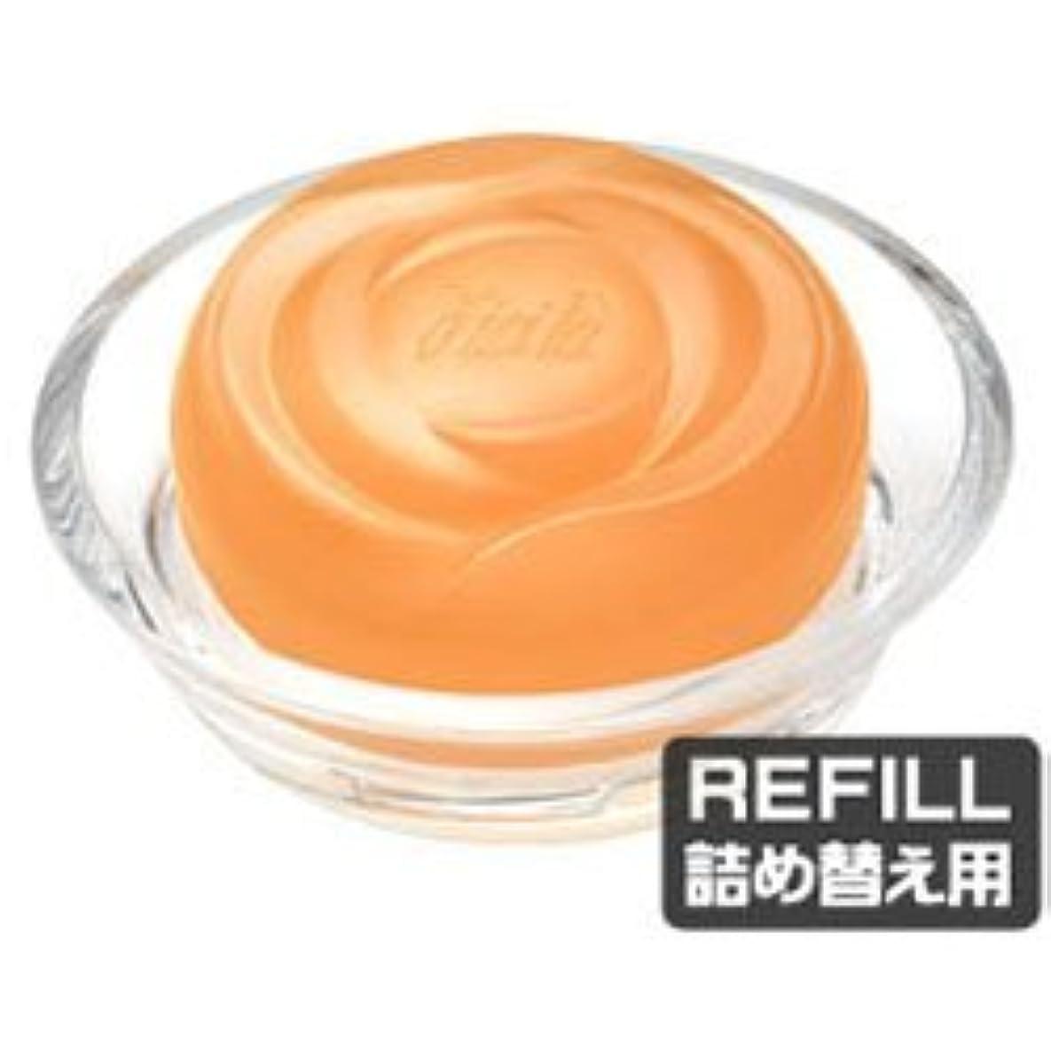 分析的真鍮繊毛【ディシラ】EX フォーミングリッチ ケーク レフィル 100g
