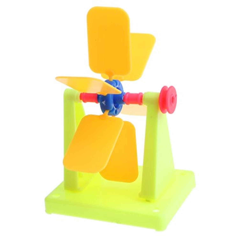 CUTICATE DIY科学実験玩具 組み立て 教育おもちゃ 子ども 贈り物 ウォーターホイールモデル 科学実験玩具