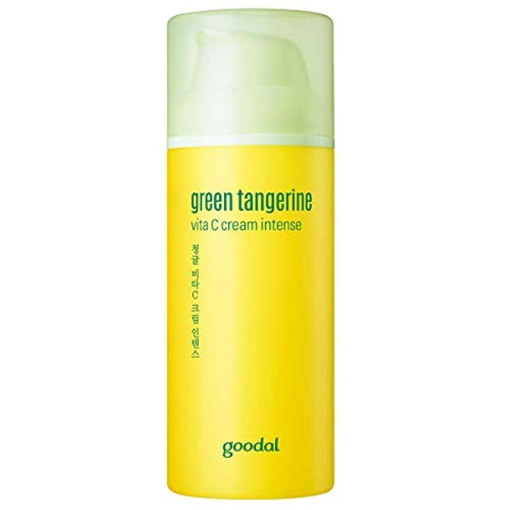 お勧め面倒口Goodal チョンギュルビタCクリームインテンスセットgreen tangeriene vita C cream intense set[並行輸入品]