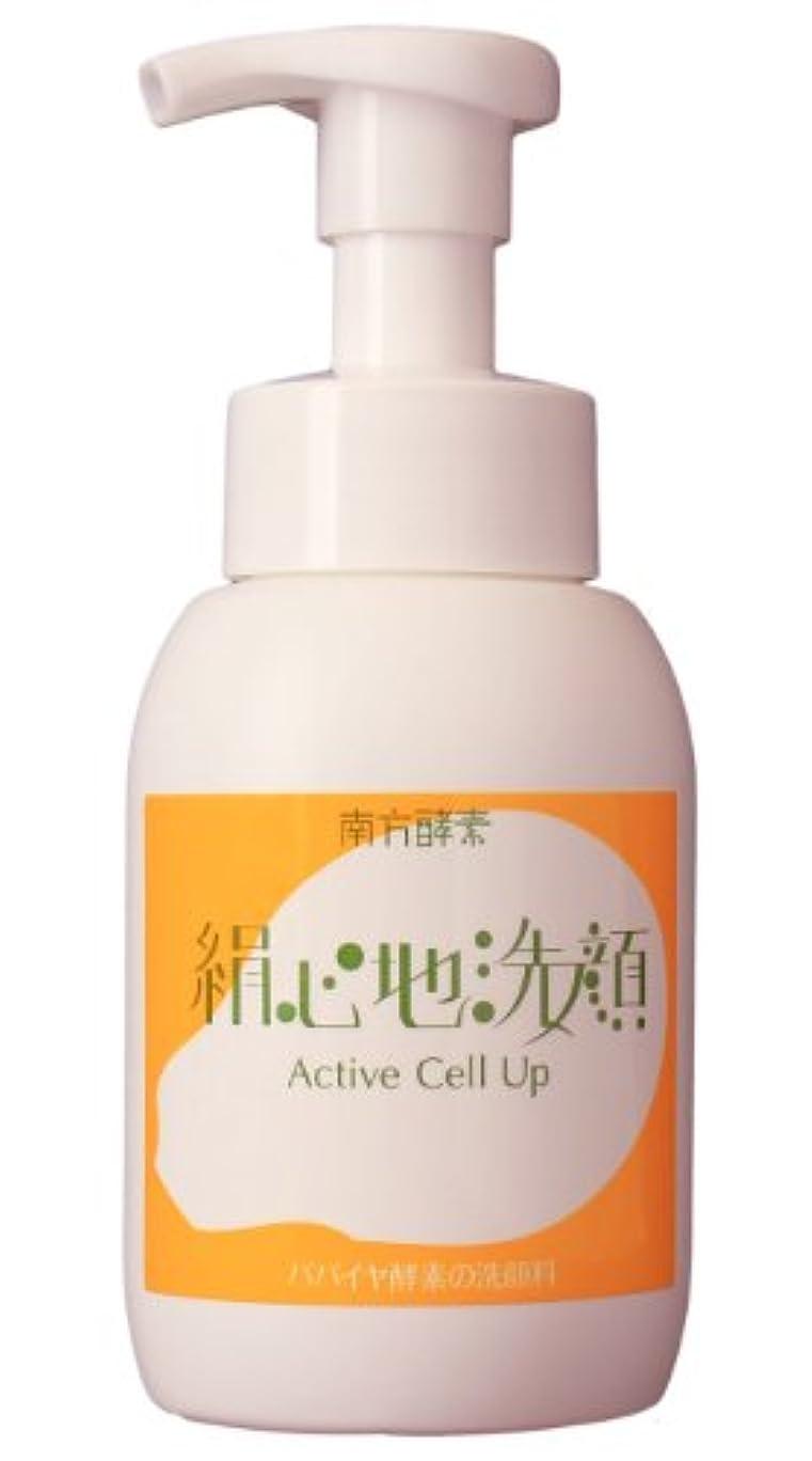 定期的に解放する明確な南方酵素 絹心地洗顔 300ml